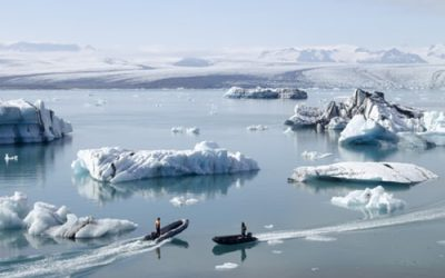 Antarctica The Mysterious Island And The 3 Rare Animals